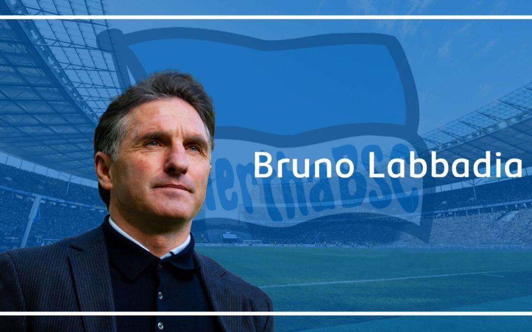 Warum Labbadia der Richtige für Hertha ist